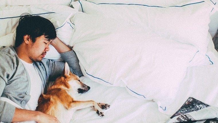 dog-sleep-habits-1.jpg